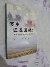 回乡,还是进城?:中国农村外出劳动力回流研究