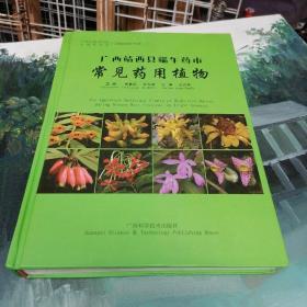 广西靖西县端午药市常见药用植物