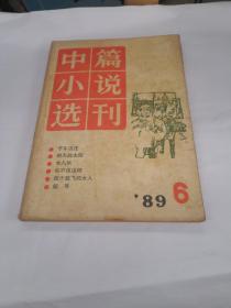 中篇小说选刊 1989年第6期