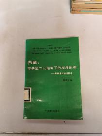 西藏 : 非典型二元结构下的发展改革 : 新视角讨论与报告【满30包邮】