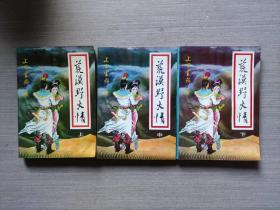 武侠小说:荒漠野火情(上中下全三册)
