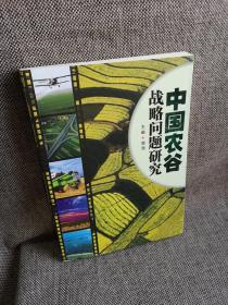 中国农谷战略问题研究