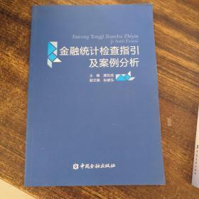 金融统计检查指引及案例分析(2次印刷)