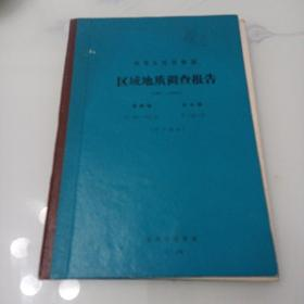 中华人民共和国区域地质调查报告:漳州幅.东山幅(矿产部分)