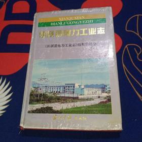 仙居县电力工业志