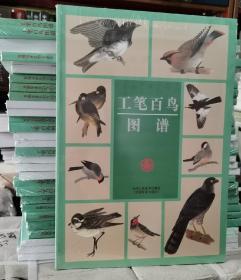 工笔百鸟图谱