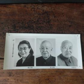 1993年,新当选的八届政协副主席:钱正英、苏步青(民盟中央副主席)、侯镜如(民革中央副主席)