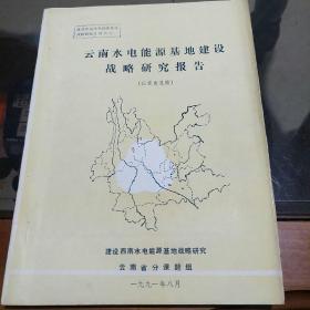 云南水电能源基地建设战略研究报告