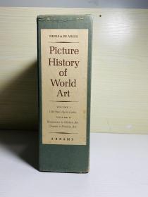 Picture History of World Art 两卷箱装 布面精装 铜版纸,重约10斤。大12开本,尺寸约为:22.5*28cm 纸张厚实