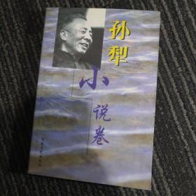 孙犁小说卷