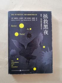 现货:拯救黑夜:星空、光污染与黑夜文化