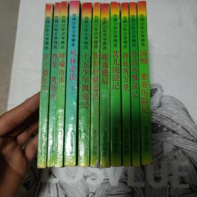 世界少年文学精选 全十一册