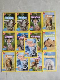 National Geographic Readers: Koalas 国际地理少儿版(13本合售)