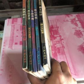 世界伟人生命之旅丛书(天生我才,黑色季节,最后驿站,生命欢舞,孤独的心)5本