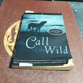 The Call of the Wild:Aladdin Classics