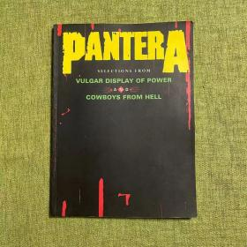 Pantera:Selections From Vulgar Display Of Power AND Cowboys From Hell