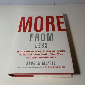 More from Less:The Surprising Story of How We Learned to Prosper Using Fewer Resources―and What Happens Next