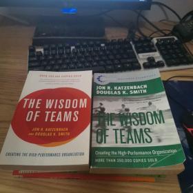 The Wisdom of Teams[团队智慧](两本合售)