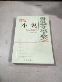鲁迅文学奖 获奖小说