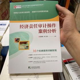 经济责任审计操作案例分析