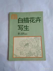 白描花卉写生