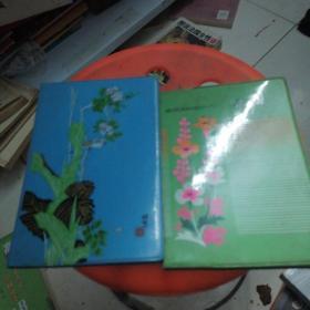 老日记本两个