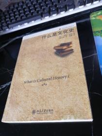 什么是文化史:历史学的实践丛书