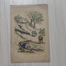 画片:牧歌 张漾兮--上海人民美术出版社