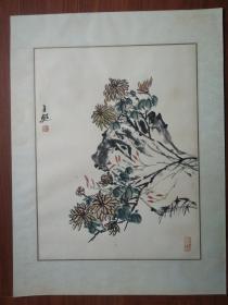 海上女名画家王甦:菊 画芯45/35