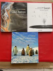 地球我的家园罗红摄影作品集;1火烈鸟的天堂、 最美的爱天鹅冰雪情南北(三本合售)