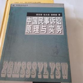 中国民事诉讼原理与实务