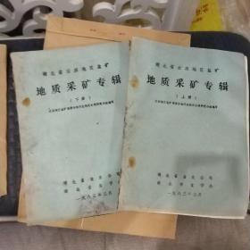 湖北省云应地区盐矿地质采矿专辑(上下册)