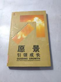 愿景引领成长