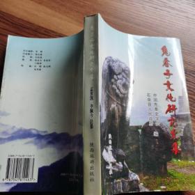 鬼谷子文化 研究 文集
