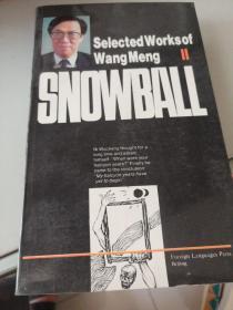 SNOWBALL王蒙选集(卷二)