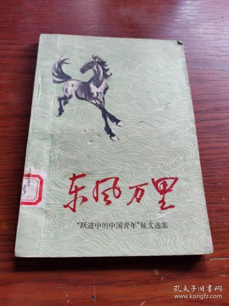 东风万里 (跃进中的中国青年征文选集)