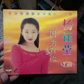 【收藏光盘】杨钰莹 南国佳人 因为有你 个人专辑 北京青少年音像出版社【图片为实拍,品相以图片为准】播放效果好。