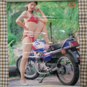 挂历1994年 美女泳装摩托挂历,发发发     13张全 塑膜