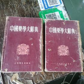 中国药学大辞典 上下册