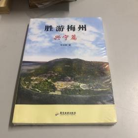 胜游梅州. 兴宁篇