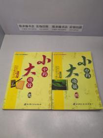 大小药大功效 中医入门第一书:(壹)张步桃开 药方 +(贰)张步桃治大病【1,2两册和售】
