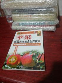 果树优质高效安全生产技术丛书:苹果优质高效安全生产技术