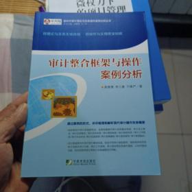 审计整合框架与操作案例分析/新时代审计理论与实务操作案例分析 丛书