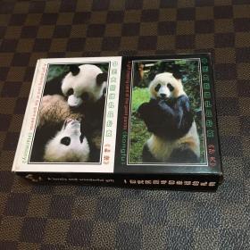 中国大熊猫礼品扑克