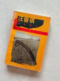 汪曾祺小说精选