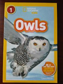 Owls 【正版全新】