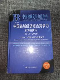 中国省域竞争力蓝皮书:中国省域经济综合竞争力发展报告(2018~2019)【全新未拆封】
