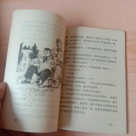 雷锋和红领巾 【插图本】