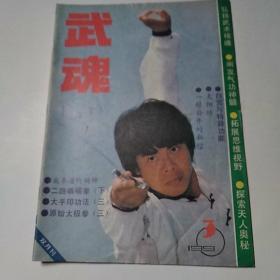 武魂 杂志1990年第3期总第33期(8品16开48页目录参看书影)51470