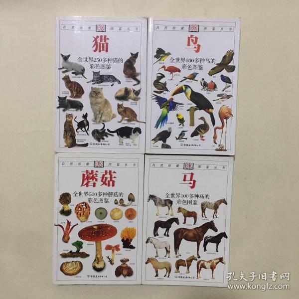 DK自然珍藏图鉴丛书(4册合售)马/蘑菇/鸟/猫